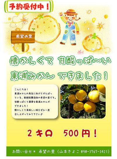 みかんポスター.jpg