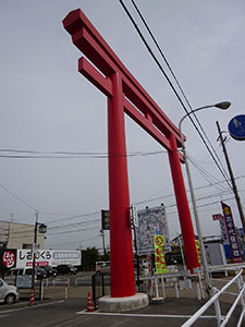 P1020364.jpg