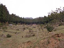 20130324-6.jpg