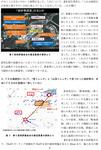 大飯原発 申し入れ-解説版2013-9-17-2.jpg
